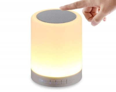 Portable Wireless Bluetooth Speaker with Night Light Touch Control LED Color Change Table Lamp, Bluetooth, AUX, TF Card, FM and Inbulit MIC (Multicolor) dream value