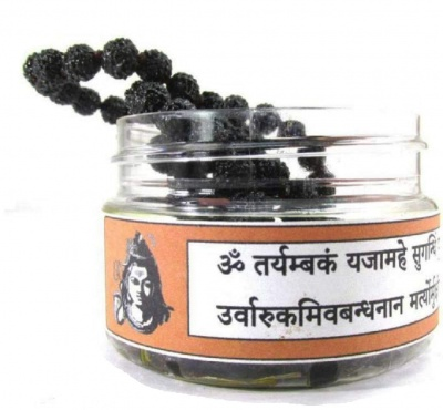 Holy Ratna Rudraksha Mala Dipped in Oil and Herbs (Mantra Siddha-Abhimantrit) 108 Plus 1 Bead